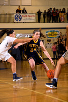 030317 Varsity Girls Basketball District Final - DeWitt vs. E. Lansing
